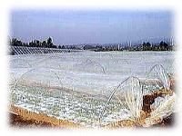 落合ハーブ園  ハーブ 「人の体に良いはずのハーブに農薬などは使わない」